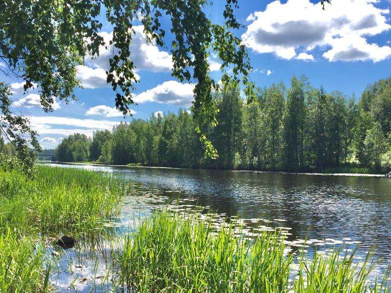 Aistien herkistämistä Jämsän puistoissa